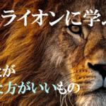 野生ライオンに学ぶ、あなたが食べた方がいいもの