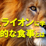 野生ライオンに学ぶ、健康的な食事とは