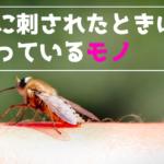 虫に刺されたときに使っているモノ